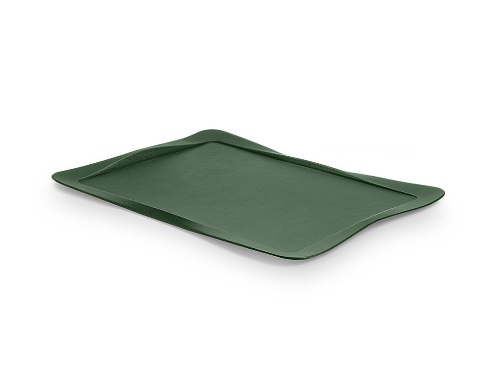 Carbon tray green